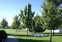 Carterville-Park