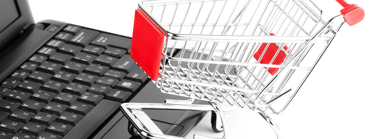 Shopping cart with computer