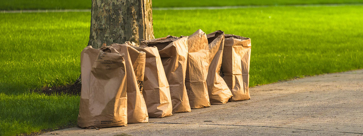 yard-waste-bags-sitting-curbside